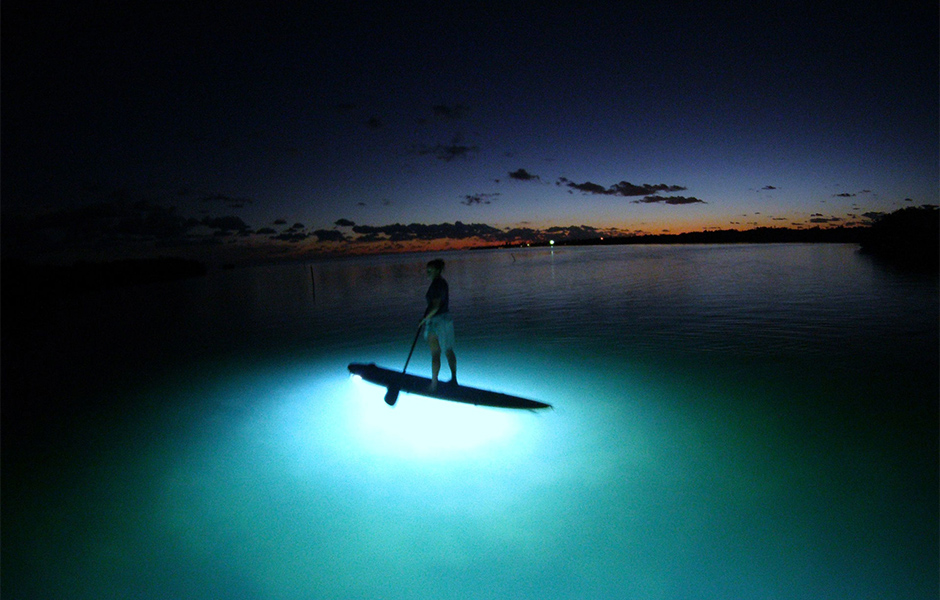 night paddleboarding 2
